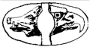 Poinçon Or 12 Carats Sanglier Aigle
