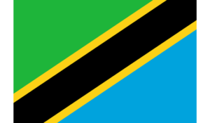 Change de Shilling Tanzanien