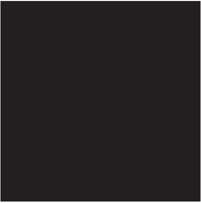 Lingots d'Or Argor Heraeus